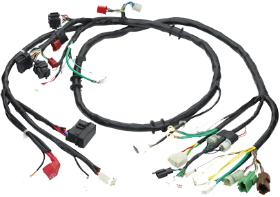 Electrical Wiring Harness & Components